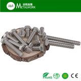 Boulon et noix de tête Hex d'acier inoxydable de Ss304 Ss316 avec la rondelle (DIN931 DIN934)