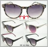 نظّارات شمس عصريّة وحارّ يبيع (11252)