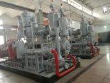 Máquina de moldeo por soplado de PET/compresor de aire de alta presión