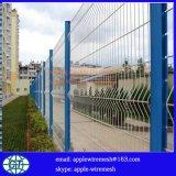 ポストおよびクリップが付いている溶接された塀の網50X200mm