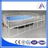 Frontière de sécurité en aluminium en gros de piscine