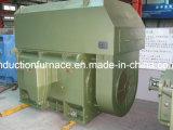 Yks 40HP/CV 30kw 1750rpmの鋳鉄のリスケージの非同期モーター