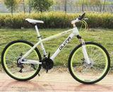 Venda por grosso 26polegadas Mountain Bike bicicletas de montanha