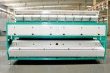 직접 제조자에서 큰 수용량을%s 가진 자동적인 CCD 사진기 밥 Quinoa 분류 기계