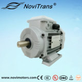 Motor eléctrico de 750W flexible con capacidad de transmisión de potencia mecánica (YFM-80)