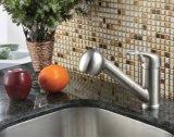 Le robinet simple de cuisine de bassin de trou retirent