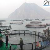 2016 حارّ عمليّة بيع سمكة يزرع قفص