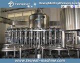 Taponadora de llenado de la arandela de jugo de 3 a 1 de la máquina Monoblock