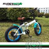 Bicicletta elettrica della gomma grassa con il motore posteriore