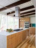 シェーカー様式の現代台所デザイン