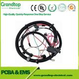 Application de l'automobile Automotive faisceau de fils du faisceau de fils de l'Assemblage de câble personnalisé sur le fil électrique