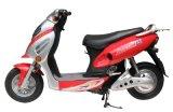 Scooter électrique/moto/vélo(ox-C01)