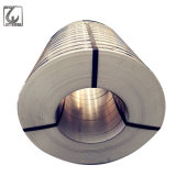 . Bande enduite par PVC d'acier inoxydable de GV de granulation de JIS 400