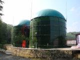 2*800m3 Cstr 혐기성 Biogas 소화자