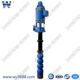 De verticale Fabrikant van het Systeem van de Pomp van het Water van Multisatge van de Turbine Vastgestelde