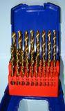 de Rechte Boor Vastgestelde DIN338 van de Draai van de Steel 19PCS HSS