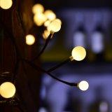 세륨 RoHS 실내 훈장을%s 승인되는 에너지 절약 까만 등나무 램프