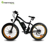 bici elettrica della gomma grassa molto poco costosa di 48V 750W fuori dalla strada Ebike