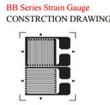 짐 세포를 위한 T 패턴 Bb 시리즈 변형계