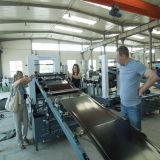 Bande en plastique de PE d'extrudeuse faisant la machine