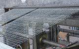 良い業績の鳥小屋の六角形の鋼線の網