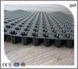 Scheda formata fossette su di drenaggio di Geomembrane del polietilene ad alta densità