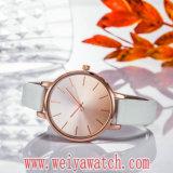 Orologio casuale classico delle signore del quarzo della cinghia di cuoio di modo (Wy-17029B)