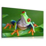 55pulgadas LCD de alto brillo pantallas de señalización pública