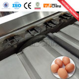 Neues Entwurfs-heißes Verkaufs-Ei-Sortiermaschine
