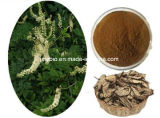 Triterpene 2.5%-8% (딸랑딸랑 소리) 순수한 자연적인 까만 Cohosh 노화 방지 추출