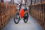C&N preiswerter Verkaufs-elektrisches Motorrad 8000W für Europa-Markt