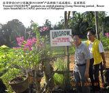 O condicionador do solo de Unigrow para toda a fruta que planta, promove a qualidade do solo e de fruta