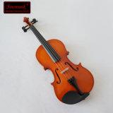 Sinomusikのバイオリンの箱が付いている最も安い合板のバイオリン