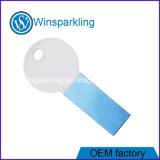 Transparentes Schlüssel USB-Laufwerk USB-grelle Platte