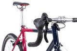 [700ك] [فيإكسي] ثابتة ترس طريق [سكلوكروسّ] درّاجة /Viper ([كإكس1])