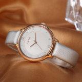 Reloj de señoras al por mayor de la mujer del regalo del ODM del OEM del reloj (Wy-052B)