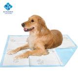 Горячее сбывание - крупноразмерные пусковые площадки тренировки щенка любимчика