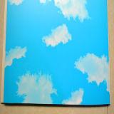 屋内装飾のための熱い販売法PVC壁Panel/PVCの天井