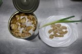 Стержни Picecs раскрывают грибы олов законсервированные OEM китайские