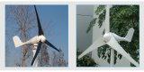 Berufsfabrik hochwertiges Wg43W 300With 600With Turbine-Preis des Wind-1kw/2kw/3kw/Wind-Generator