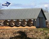 Stahlkonstruktion-Geflügel bringen Bauernhof der Geflügel-Landwirtschaft-/Poultry in Kenia unter