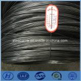 Draad van het Staal van de Lente van de Koolstof van de Leverancier van China de Hoge Stellite 159 190 228