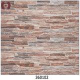 대부분의 대중적인 새로운 3dinkjet 벽 도와 (360127)