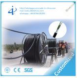 Cabo de uma comunicação de cabo da fibra óptica com o 12 blindados claros do núcleo