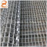 La cinta transportadora de acero inoxidable para el procesamiento de alimentos, industria Heatreatment