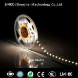 Tira 12V del precio 5050 los 60LEDs/M LED de la promoción/luces de 24V LED con la luz de tira de 5m/Reel LED 5 años