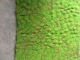 Высокое качество Искусственные растения и цветы Зеленая Стена Gu1481963250269