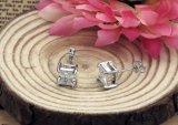 De elegante en Charmante Zwarte Zilveren Oorringen van de Nagel van de Kristallen van het Bergkristal Volledige Vierkante voor het Doordringen van de Verklaring van de Meisjes van Vrouwen Juwelen