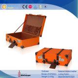 Retro valigia di memoria con il carrello (1675R25)