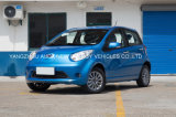 Het Elektrische Voertuig van uitstekende kwaliteit van de Auto met 5 Zetels